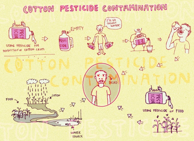 Contamination through pesticides